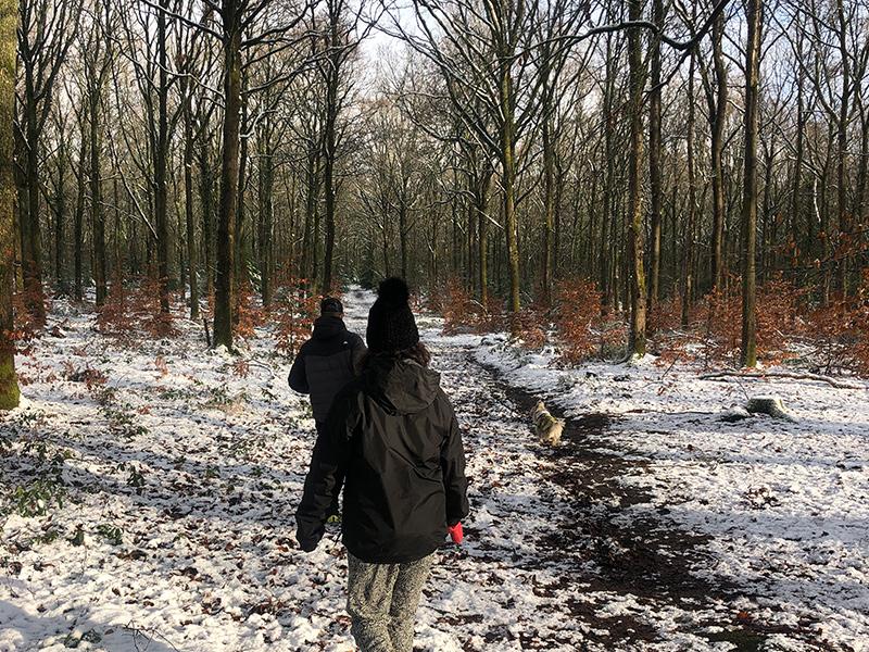 2 people walking in woodland