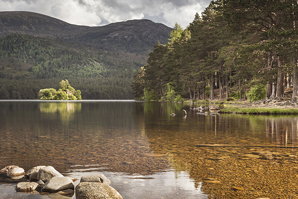 site/uploads/images/assets/National Parks/582x388-Thumbnail-Cairngorms.png