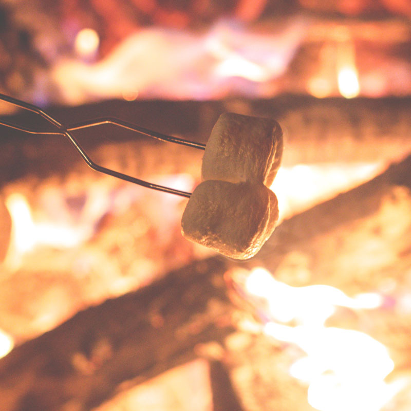 Cooking marshmallows over a camp fire using a metal skewer