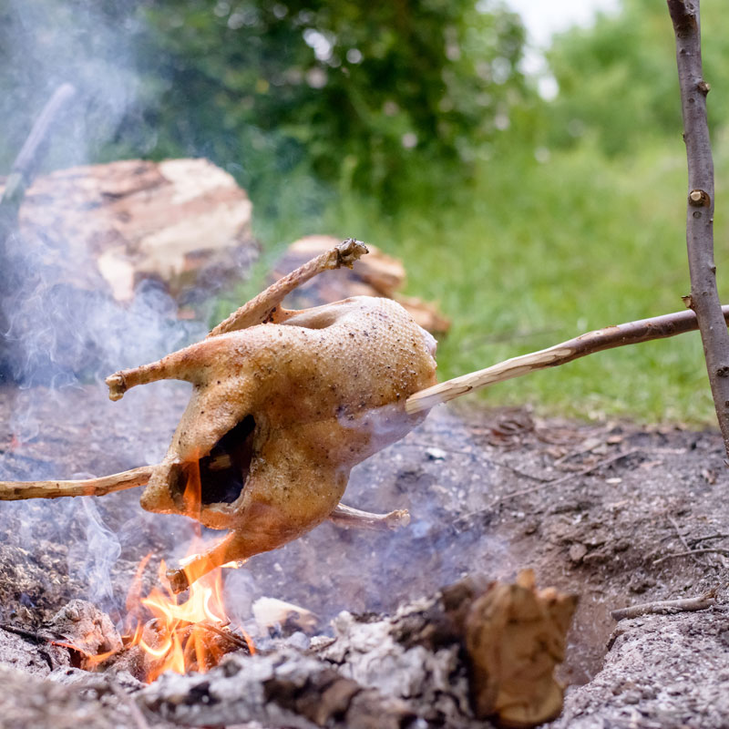 Cooking a whole chicken above a camp fire using a spit