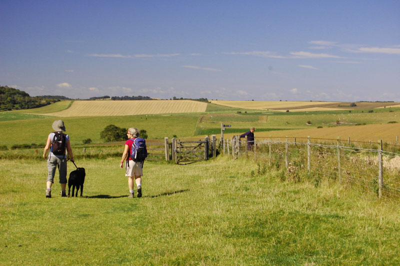 The South Downs Way - © Trevor Harris vie Geograph (Creative Commons)