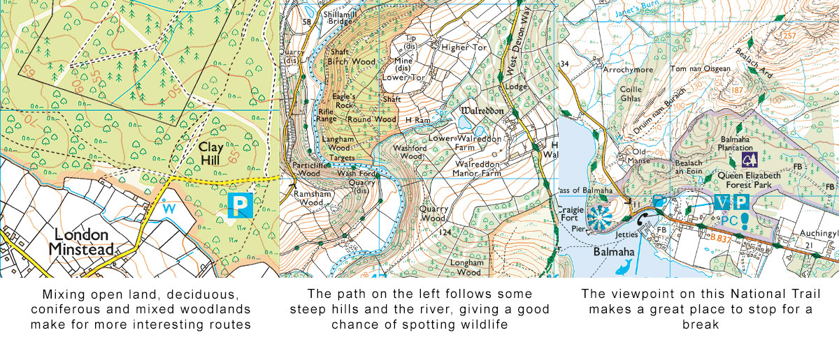 planning a walking route in 5 easy steps